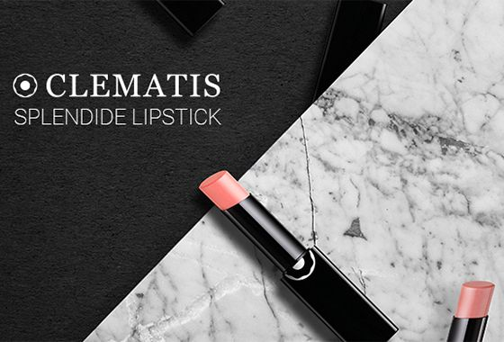 محصولات آرایشی کلماتیس clematis